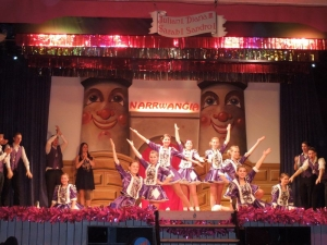2014-02-01 Narrwangia Ball Dirlewang_3